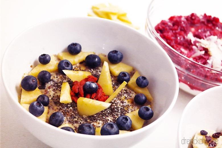 Protein-Porridge mit Chia-Blaubeer-Apfel Topping