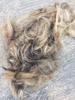 Haare Ab Warum Du Dir Einen Longbob Gut Uberlegen Solltest
