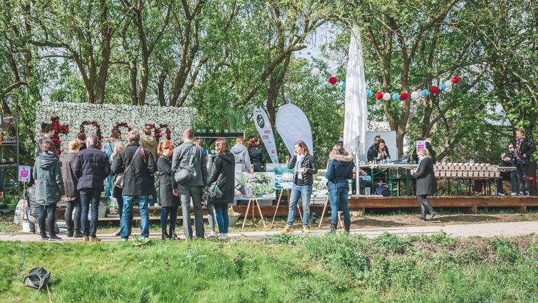Unser Erster Award Garden And Home Blog Award 2017 Ghba17 Dreieckchen Lifestyle Blog